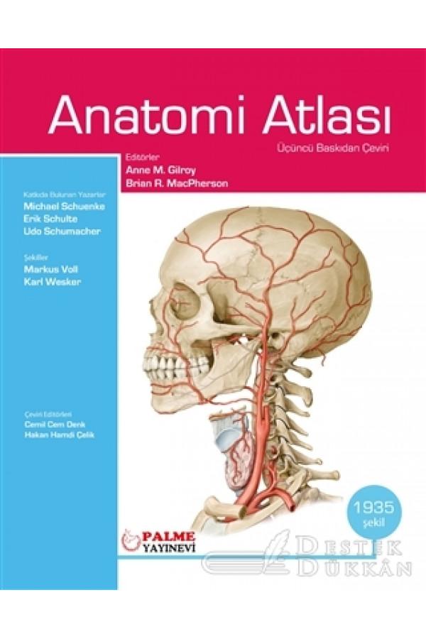 Anatomi Atlası Gilroy